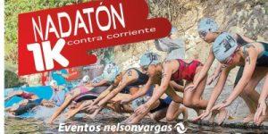 WebEstacas2